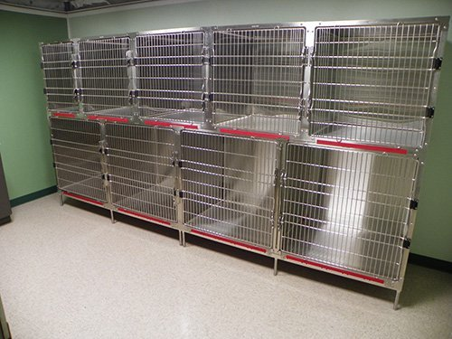 Sevierville Animal Clinic Pre-Surgery Kennels